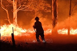 Cháy rừng tại Australia: Tăng cường công tác cứu hỏa
