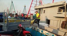Bà Rịa-Vũng Tàu: Ngư dân Bình Châu vươn khơi, bám biển