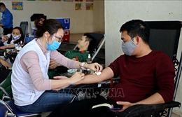 Hòa Bình: Khử trùng địa điểm và kiểm tra thân nhiệt tại 'Ngày hội hiến máu cứu người'