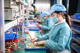 Trung Quốc: Người dân tự cách ly tại nhà, doanh số bán hàng điện tử tăng mạnh
