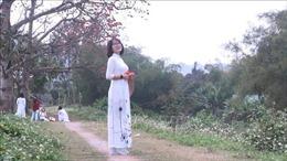 Thiếu nữ duyên dáng dưới khung trời rực màu hoa gạo tháng 3