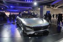 Hyundai, Kia, Samsung, LG tạm dừng hoạt động chế tạo tại Ấn Độ
