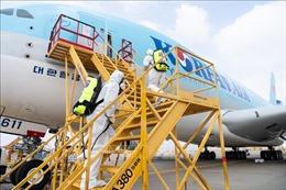 IATA kêu gọi Chính phủ Hàn Quốc cứu trợ các hãng hàng không nội địa