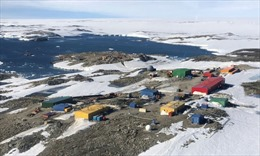 Ghi nhận nhiệt độ cao kỷ lục tại Nam Cực