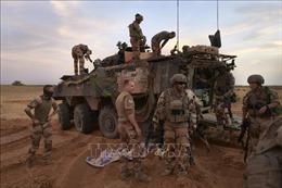 Bốn binh sĩ Pháp trong lực lượng Barkhane nhiễm virus SARS-CoV-2