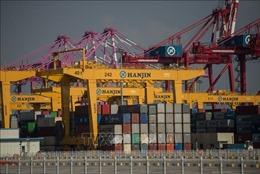 WTO: Thương mại toàn cầu có thể suy giảm 1/3 trong năm 2020