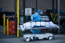 Dịch COVID-19: New York ghi nhận tới 779 ca tử vong trong 24 giờ qua