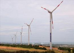 Tạm dừng bổ sung các dự án điện gió vào Quy hoạch điện VII (hiệu chỉnh)