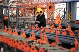 Chủ tịch Tập Cận Bình khẳng định xu thế cải cách dài hạn trong nền kinh tế Trung Quốc không thay đổi