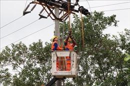 Giải phóng mặt bằng dự án truyền tải điện: Cần sự đồng thuận