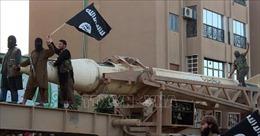 IS hành quyết 11 chiến binh thân Chính phủ Syria