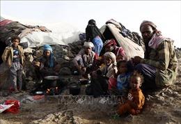 Liên hợp quốc buộc phải cắt giảm viện trợ cho Yemen