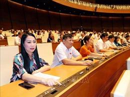 Triển khaiChương trình xây dựng luật, pháp lệnh năm 2021