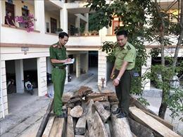 Chặn xe tải chở 4,6 khối gỗ quý không rõ nguồn gốc xuất xứ