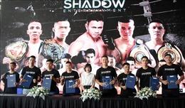 Phát triển mô hình võ thuật chuyên nghiệp tại Việt Nam
