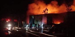 Đã khống chế được đám cháy tại huyện Thanh Trì (Hà Nội)