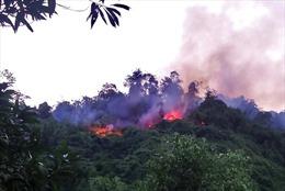 Liên tiếp xảy ra các vụ cháy rừng và cháy nhà dân tại Nghệ An