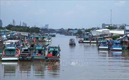 Kiên Giang có trên 84% tàu cá lắp đặt thiết bị giám sát hành trình