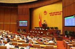 Nghị quyết về Chương trình xây dựng luật, pháp lệnh năm 2021