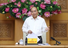 Thủ tướng Chính phủ: Tập trung kích cầu nội địa và không để mất thị trường quốc tế