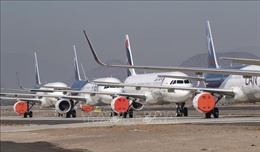 Ngành hàng không toàn cầu bước đầu hồi phục