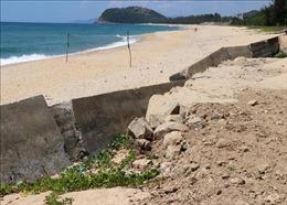 Kè biển Quảng Ngãi xuống cấp, ảnh hưởng cuộc sống người dân