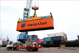 Công ty cổ phần Cảng Quy Nhơn lý giải suất đầu tư bến cảng Cảng Quy Nhơn cao