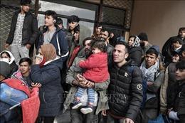Đức tiếp nhận gần 100 người tị nạn từ Hy Lạp