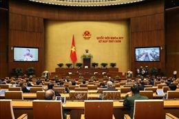 Thực hiện các Nghị quyết của Quốc hội về an ninh, trật tự, an toàn xã hội