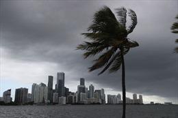 Cảnh báo bão Isaias gây lũ quét trên diện rộng tại bang Florida