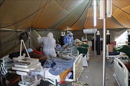 WHO cảnh báo nguy cơ Nam Phi 'suy kiệt khả năng ứng phó'do COVID-19