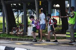 Singapore lần đầu tiên áp dụng bộ quy tắc ứng xử cho người đi bộ