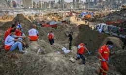 Các nhà lãnh đạo Liban đã được cảnh báo trước về nguy cơ xảy ra vụ nổ