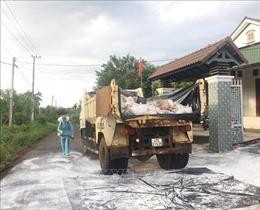 Đắk Lắk ngăn chặn dịch cúm gia cầm A/H5N6 lây lan trên diện rộng
