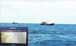 Quảng Bình xử lý hai tàu cá đánh bắt sai tuyến