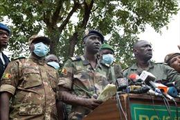 Mali: Lực lượng quân sự hoãn cuộc họp đầu tiên về chuyển giao quyền lực