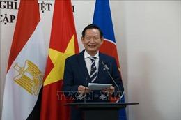 75 năm Quốc khánh 2/9: Đẩy mạnh truyền thông, vun đắp 'nhịp cầu'Việt Nam-Ai Cập