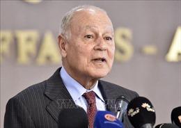Các ngoại trưởng Arab họp trực tuyến về các vấn đề chủ chốt trong khu vực