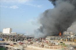 Hòa nhạc tưởng nhớ các nạn nhân vụ nổ ở Beirut