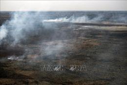 Hàng trăm lính cứu hỏa được huy động chống cháy rừng ở Argentina