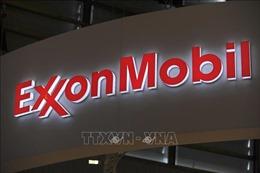 Tập đoàn dầu khí ExxonMobil cắt giảm 1.600 việc làm ở châu Âu