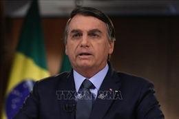 Brazil 'hạ màn' cuộc chiến chống tham nhũng lớn nhất trong lịch sử