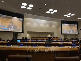 Hội đồng Bảo an LHQ thảo luận về thúc đẩy, nâng cao hiệu quả các biện pháp trung gian nhằm ngăn ngừa, giải quyết xung đột