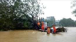 Thừa Thiên - Huế: 6 người thiệt mạng, 3 người mất tích do mưa lũ