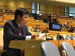 Việt Nam cam kết đóng góp tích cực vào các hoạt động gìn giữ hòa bình LHQ