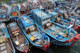Ứng phó với bão số 9: Cục CSGT thành lập Trung tâm chỉ huy tại Đà Nẵng