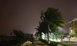 Bão số 9 bắt đầu gây mưa và gió giật mạnh tại Đà Nẵng