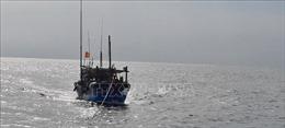 Tàu cá bị chìm trên đường tránh bão, 12 ngư dân mất tích