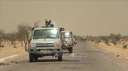 Công dân Mỹ bị bắt cóc tại Niger được trả tự do