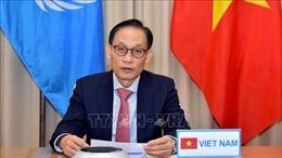 Việt Nam tham dự Phiên thảo luận trực tuyến Cấp cao Hội đồng Bảo an Liên hợp quốc